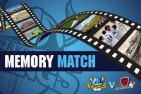 Memory Match: Vikings v Steelbacks T20
